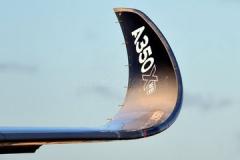 winglet-A350X.jpg-nggid03419-ngg0dyn-240x160x100-00f0w010c011r110f110r010t010.jpg