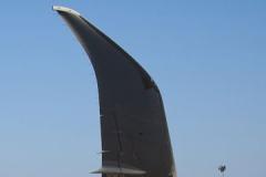 winglet-B787.jpg-nggid03414-ngg0dyn-240x160x100-00f0w010c011r110f110r010t010.jpg